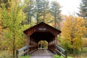 Photo: ALLEGANY STATE PARK