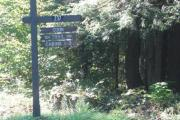 Photo: COO003, Coon Cabin Trails